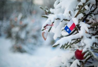 winter weather, winter trees, texas flag, texas winter