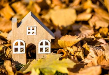 wooden model home in fall leaves